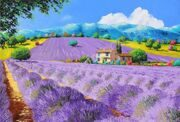 jean-marc-janiaczyk lavender-under-sunshine 3396_5000
