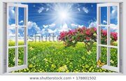 flower-field-dandelions-view-window-450w-178801502