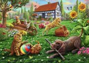 dogs-and-cats-at-play-adrian-chesterman 6749_9449